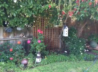 cropped-garden-may-3-20143.jpg