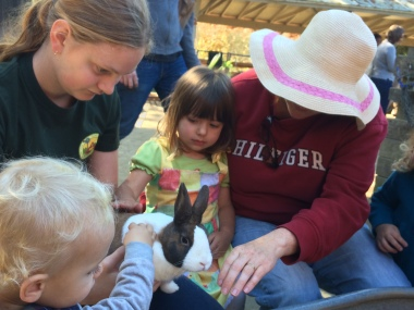 Bunnies2_little farm