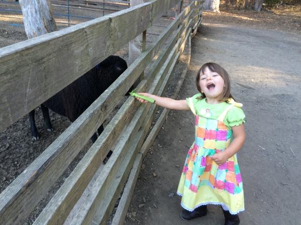 Eleanor1_Little Farm