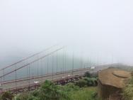 SF Vacation 15