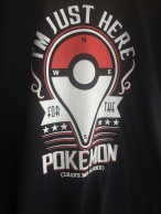 Pokemon was everywhere and nowhere