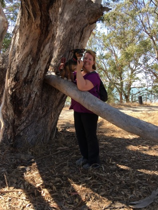 Bodhi's favorite tree at Pt Pinole